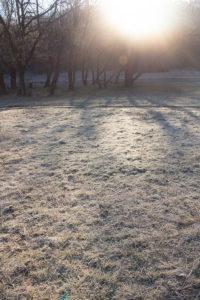 Весеннее морозное утро
