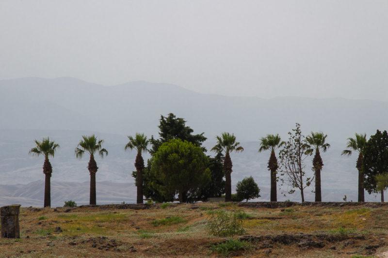 Турция. Памуккале. На краю древнего города Иераполис