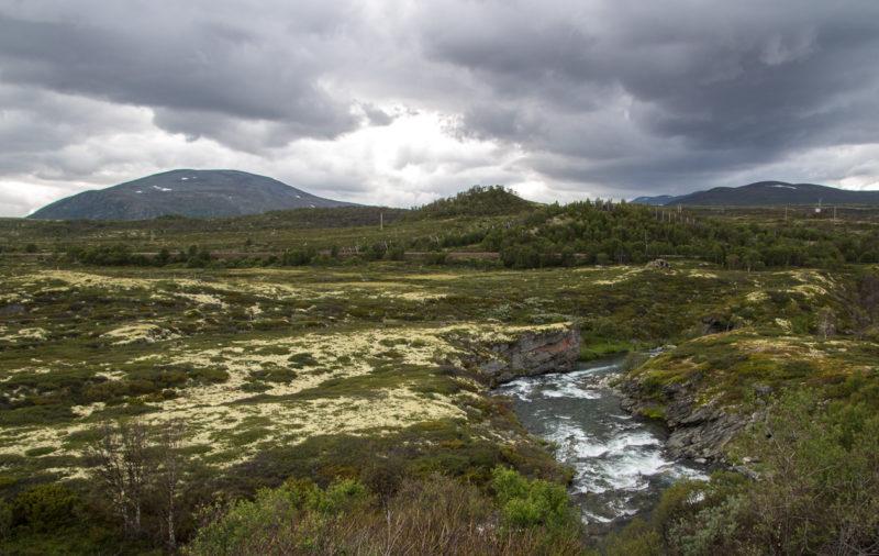 Ф.95–97. Верхнее плато и начало реки Дрива